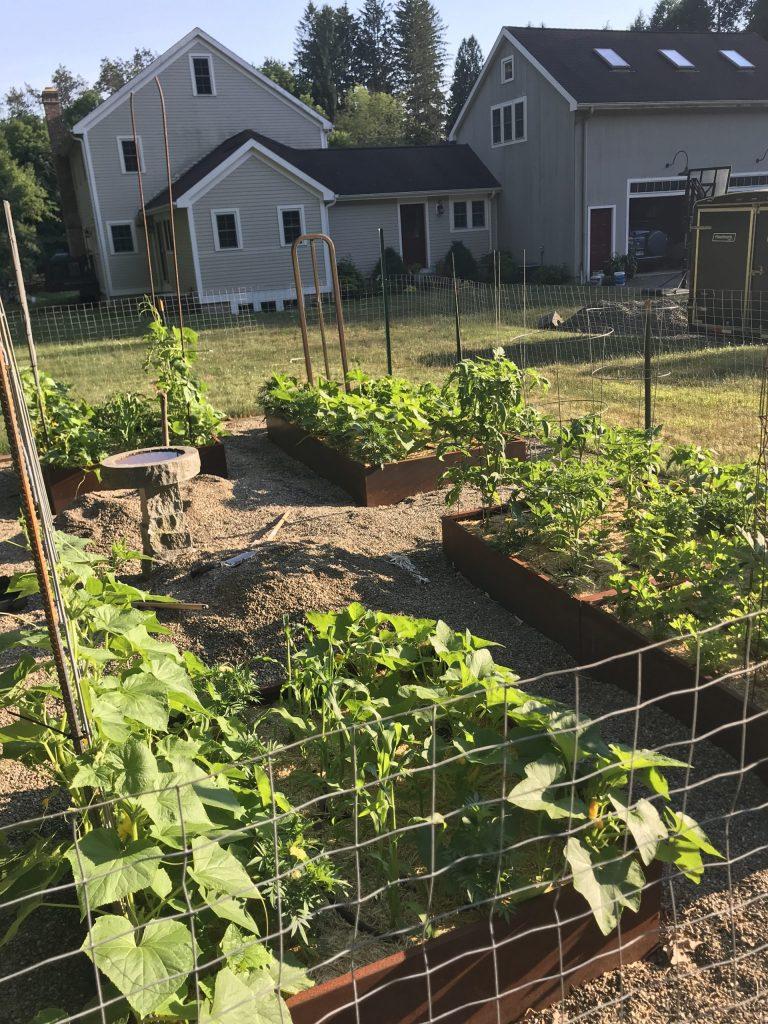 Formal raised planter vegetable garden