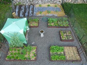 Formal Vegetable Garden